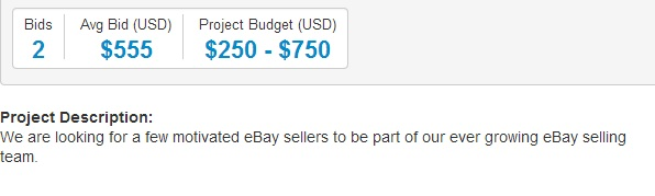 Freelancer - Ebay Seller